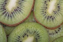 Beautiful kiwi fruit slices Stock Images