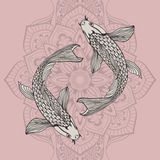 Beautiful koi carp fish illustration in monochrome. Symbol of love, friendship and prosperity. A beautiful koi carp fish illustration in monochrome. Symbol of Stock Image
