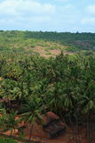 Beautiful Konkan Landscape Royalty Free Stock Photo