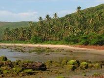 Beautiful Konkan scene in western India Royalty Free Stock Image