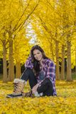 Beautiful Korean Brunette Model Posing In A Field Of Yellow Leav. A beautiful ethnic brunette model posing outdoors in a field of yellow leaves Royalty Free Stock Photos