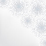 Beautiful lace floral background with flowers. Beautiful elegant floral background with grey and white stylized flowers. Stylish trendy romantic background Royalty Free Stock Image