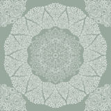 Beautiful lace pattern Royalty Free Stock Photos