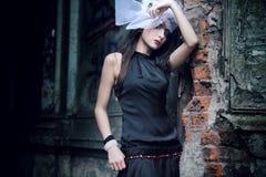 Beautiful lady stock photos