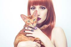 Beautiful lady with Abyssinian cat. Fashionable photo of elegant lady with Abyssinian cat stock images