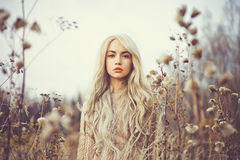 Beautiful lady in autumn landscape Stock Photography
