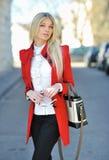 Beautiful lady with bag Stock Photos