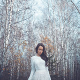 Beautiful lady in a birch forest. Outdoor fashion photo of young beautiful lady in a birch forest Stock Image
