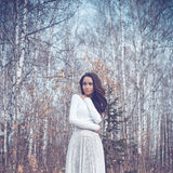 Beautiful lady in a birch forest Stock Photos