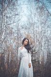 Beautiful lady in a birch forest Stock Photography