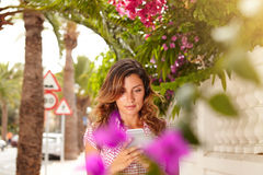 Beautiful lady browsing the internet on cell phone Stock Image