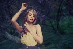 Beautiful lady in fairy forest. Photo of young beautiful lady in fairy forest royalty free stock images