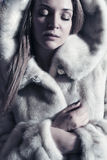 beautiful lady in a fur Stock Image