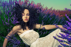 Beautiful lady in lavender royalty free stock image