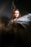 Beautiful lady with long brown hair Royalty Free Stock Photo