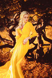 Beautiful lady in a long yellow dress Royalty Free Stock Images