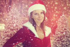 Beautiful lady posing for Christmas Stock Photography