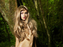 Beautiful lady in the rainforest. Portrait of a nude elegant lady in a green rainforest Royalty Free Stock Photos