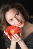 Beautiful lady with red gerber. Portrait. Beautiful woman with red gerber Stock Photos