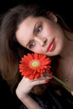 Beautiful lady with red gerber. Portrait. Beautiful woman with red gerber Stock Photography