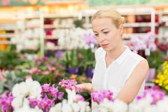 Beautiful lady smelling colorful blooming orchids. Royalty Free Stock Images