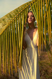 Beautiful lady in sunlight Royalty Free Stock Image