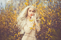 Beautiful lady surrounded autumn leaves Royalty Free Stock Images