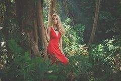 Beautiful lady in tropical forest Royalty Free Stock Photo