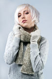 Beautiful lady in warm clothes Stock Photos