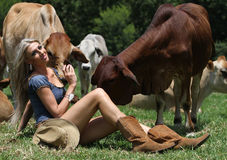 Beautiful Lady With The Cows Royalty Free Stock Photos
