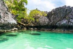 Beautiful lagoon Stock Photography