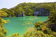 Beautiful lagoon in the valley Royalty Free Stock Photos