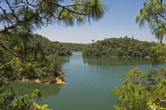 Tranquil lake in Chiapas Royalty Free Stock Image