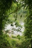 Beautiful lake. Scene in countryside royalty free stock photo
