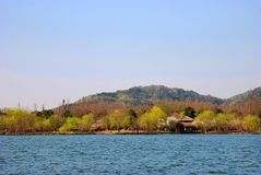 Beautiful Lake. Spring of West Lake in Hangzhou China Stock Images