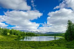 Beautiful lake in the Altai mountains, Siberia, Russia. Wild mountain lake on the background of snowy peaks. Summer landscape. In the mountains stock photography