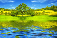 Free Beautiful Lake And Green Meadow By Springtime Stock Photo - 29760620