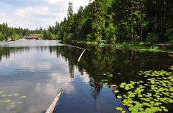 Lake Arber in Bavaria (Grosser Arbersee). Beautiful Lake Arber in Bavaria (Grosser Arbersee Stock Photos