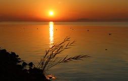 Beautiful Lake Balaton Royalty Free Stock Photo