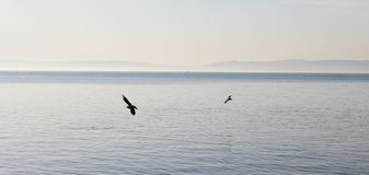 Beautiful Lake Balaton stock photo
