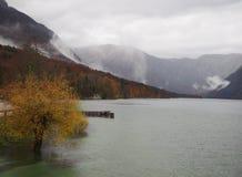 Beautiful Lake Bohinj stock photo