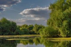 A beautiful lake in Danube Delta, Romania. Discovering Danube Delta in a Canoe. Water channel, river in Danube delta, Romania - Image royalty free stock photo