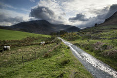 Beautiful Lake District landscape of hills and valleys on stormy Royalty Free Stock Photos