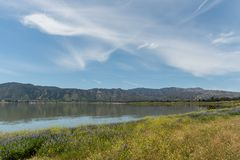 Beautiful Lake Elsinore vista in springtime, Southern California. With its shoreline covered by gorgeous wildflowers stock photography
