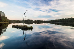 Beautiful lake in Finland. Lake view with the reflection of the forest Stock Image