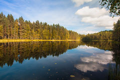 Beautiful lake in Finland. Lake view with the reflection of the forest Royalty Free Stock Photos