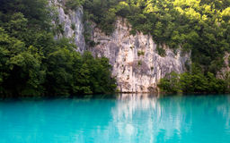 Beautiful lake in forest Royalty Free Stock Photo