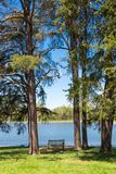 Beautiful lake and forest on sunny spring day. Royalty Free Stock Photography