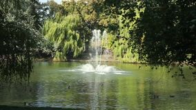 Beautiful lake with a fountain in the park. Ukraine stock footage