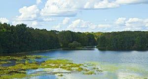 Beautiful lake framed by green vegetation, nature of Russia. Beautiful lake framed by green vegetation, nature of Russia in summer royalty free stock image
